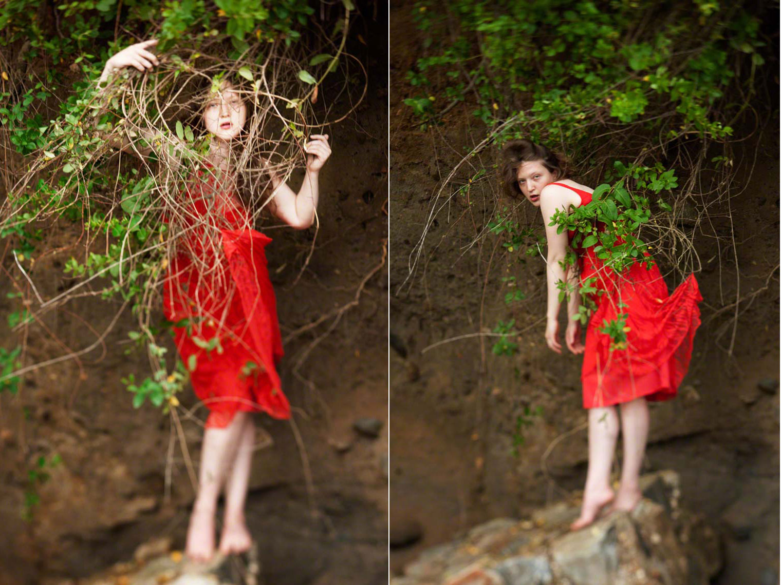 Katie Marie in vintage red dress entwined with tree branches photographed by David Murcko.